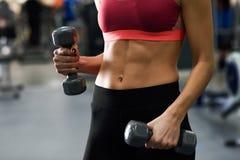 Молодая женщина с dumbells красивого брюшка поднимаясь на спортзале стоковое изображение rf
