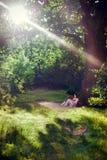Молодая женщина читая книгу под деревом Стоковые Фото