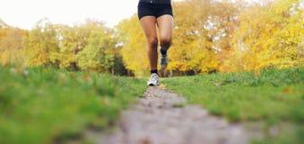 Молодая женщина jogging в парке Стоковое Изображение