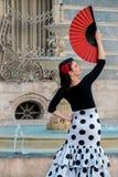 Молодая красивая женщина в костюме фламенко Стоковое Фото