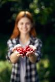 Молодая красивая женщина в саде лета держа ягоды Стоковое Изображение