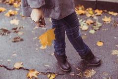 Молодая красивая женщина представляя снаружи на времени падения Стоковые Фотографии RF