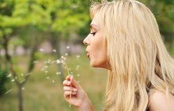 Молодая красивая женщина с одуванчиком Стоковое Изображение RF