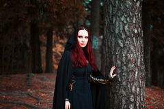 Молодая красивая и загадочная женщина в древесинах, в черном плаще с клобуком, изображении эльфа леса или ведьме Стоковые Изображения RF