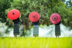 Молодая Мьянма Стоковое Изображение RF