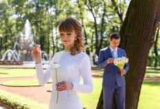 Молодая невеста срывает лепестки стоцвета для того чтобы сказать удачи стоковая фотография rf