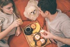 Молодая пара лежит в кровати с собакой стоковое фото