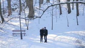 Молодая пара идет в парк зимы видеоматериал