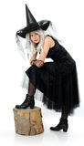 Молодая привлекательная ведьма Стоковые Фотографии RF