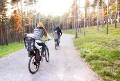 Молодая семья в теплых одеждах задействуя в парке осени Стоковые Фотографии RF