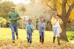 Молодая семья играя с змеем стоковые изображения