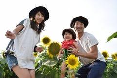 молодая семья усмехается с полем солнцецвета Стоковые Изображения