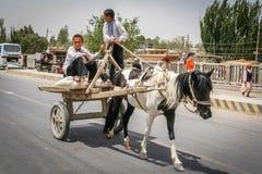 Молодая тележка верховой лошади мальчиков Стоковое фото RF