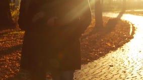 Молодая элегантная пара идет рука в руке вниз с переулка осени в ярком свете также датируйте штольн мои романтичные видят подобну видеоматериал