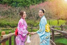 Молодое азиатское кимоно платья женщин около озера Стоковые Изображения