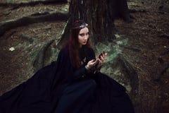Молодое красивое и загадочное изображение женщины эльфа или ведьмы леса, смотря в зеркале Стоковое Изображение RF