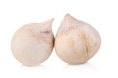 молодое мясо кокоса на белой предпосылке Стоковые Фото