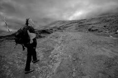 Молодой альпинист стоковые изображения rf