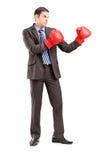 Молодой бизнесмен в костюме с красными перчатками бокса Стоковые Изображения RF