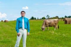 Молодой бизнесмен с земледелием на предпосылке травы и коровы Стоковые Изображения RF