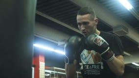 Молодой боксер с грушей спорт видеоматериал
