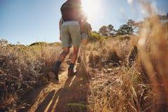Молодой взбираться hikers гористый на горе Стоковое фото RF