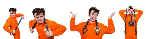 Молодой воспитанник при цепи изолированные на белизне Стоковое Фото