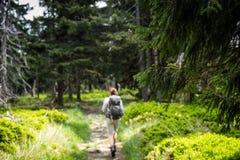 Молодой женский hiker идя на сценарный след Стоковые Изображения