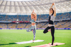 2 молодой женщины делая йогу на зеленой лужайке Стоковые Изображения RF