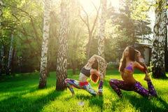 2 молодой женщины делая йогу outdoors Стоковое Изображение RF