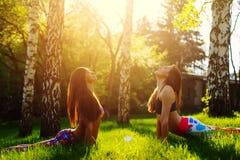 2 молодой женщины делая йогу outdoors Стоковые Изображения