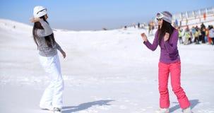 2 молодой женщины имея бой снега Стоковые Изображения