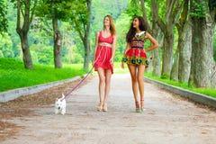 2 молодой женщины идя в город лета Стоковое фото RF