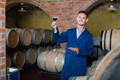 Молодой жизнерадостный работник винодельни держа бокал вина в погребе Стоковые Фотографии RF