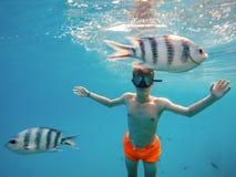 Молодой заплыв шноркеля мальчика в мелководье с рыбами коралла Стоковая Фотография RF