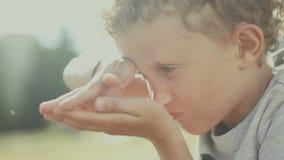 Молодой исследователь натуралиста Ребенок исследуя мир сток-видео