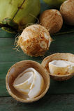 Молодой кокос Стоковое Изображение RF