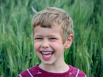 Молодой мальчик в полях Стоковые Изображения