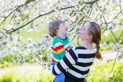 Молодой мальчик мамы и маленького ребенка в зацветая саде Стоковое Фото