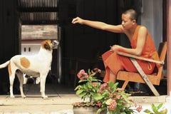 Молодой монах подавая бездомная собака Стоковая Фотография RF