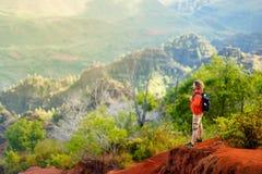 Молодой мужской турист наслаждаясь взглядом в каньон Waimea, Кауаи, Гаваи Стоковые Фото
