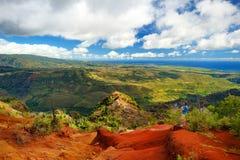 Молодой мужской турист наслаждаясь взглядом в каньон Waimea, Кауаи, Гаваи Стоковая Фотография RF