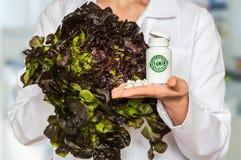 Молодой доктор держа салат и бутылку пилюлек с витаминами a Стоковая Фотография RF