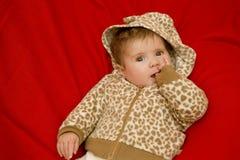 Молодой портрет младенца Стоковые Изображения