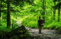 Молодой путешественник с сумкой в следе леса в горах Стоковые Изображения RF
