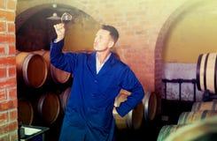 Молодой работник винодельни держа бокал вина в погребе Стоковая Фотография RF