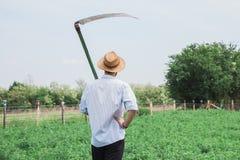 Молодой работник в поле Стоковое фото RF