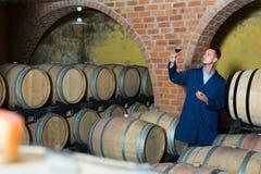 Молодой дружелюбный работник винодельни держа бокал вина в погребе Стоковые Изображения