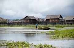 Молодой рыболов вне для рыб утра на озере инкрустации Стоковые Изображения RF