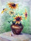 Молодой солнцецвет Стоковая Фотография RF